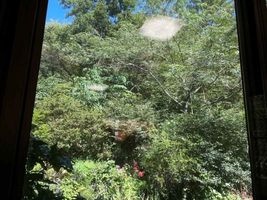 窓から見える外の風景